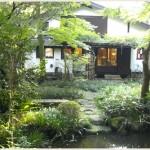 東京都内で自然を感じられて落ち着ける緑の多いお洒落カフェ5選