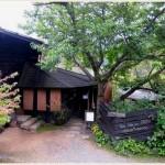 長野で自然に包まれてゆっくり落ち着ける緑豊かなお洒落森カフェ