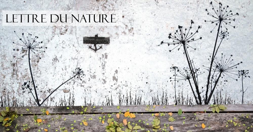 Lettre du Nature
