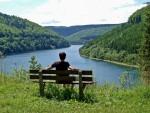 五感を働かせる森林浴の楽しみ方|一人旅のハイキングは魅力いっぱい