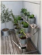 オーガニックハーブのススメ♪ベランダ菜園で育てやすい種類は?