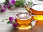 スペック高すぎ驚くべきどくだみ茶の健康効果!効能と成分・副作用は?