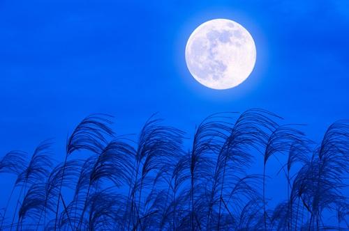 十五夜,中秋の名月