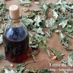 どくだみ化粧水の作り方|生葉や花で手作りは日本酒や焼酎とグリセリンで!