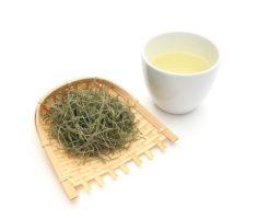 栄養豊富スギナ茶の作り方とダイエット効果|飲み方の注意点と副作用