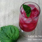 しそジュースの作り方|クエン酸やりんご酢で簡単!保存期間や賞味期限も