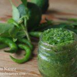 自家製柚子胡椒の作り方|青唐辛子や赤唐辛子の分量や作る時期は?