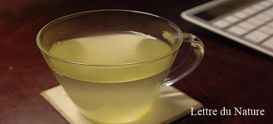 柚子茶 飲み方
