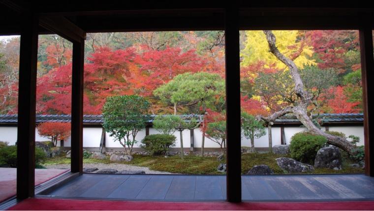 奈良の紅葉,正暦寺