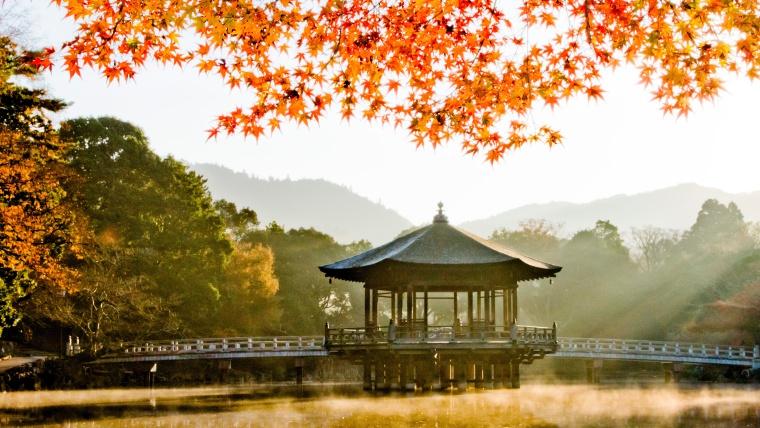 奈良の紅葉,奈良公園の浮見堂