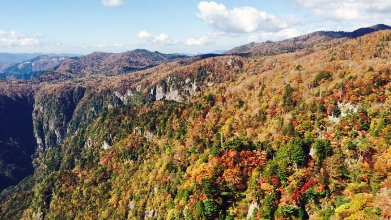 奈良の紅葉,大台ケ原