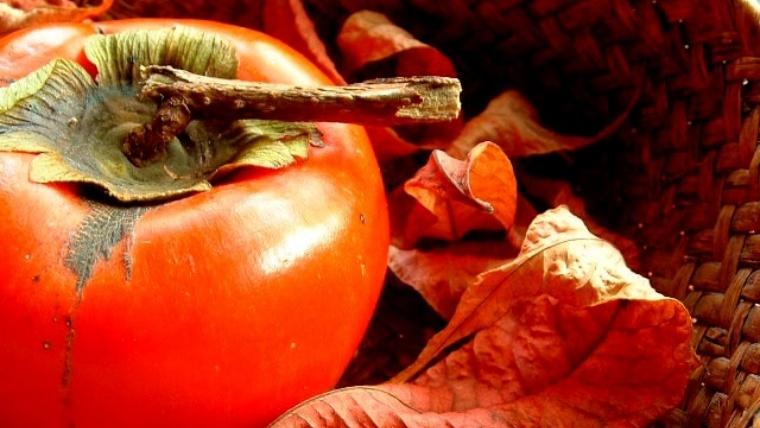柿の栄養や効能と美容効果 食べ過ぎによる便秘や下痢・カロリーに注意
